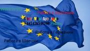 Работа в странах Европы Грмания